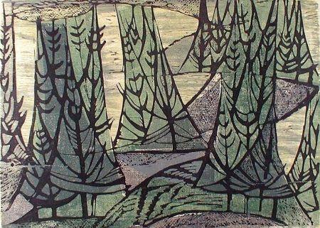 Gravure Sur Bois Haas - Wooded Point