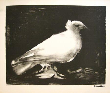 Lithographie Picasso - XXème anniversaire, mouvement de la paix (before lettering)