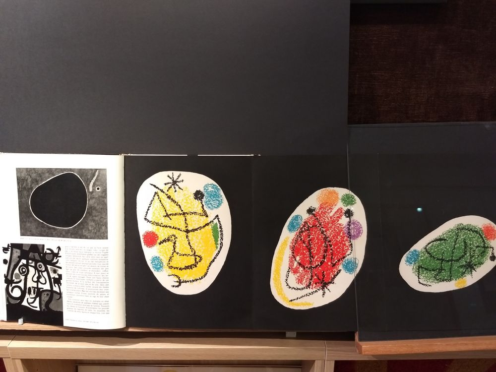 Livre Illustré Miró - Xxe No 31