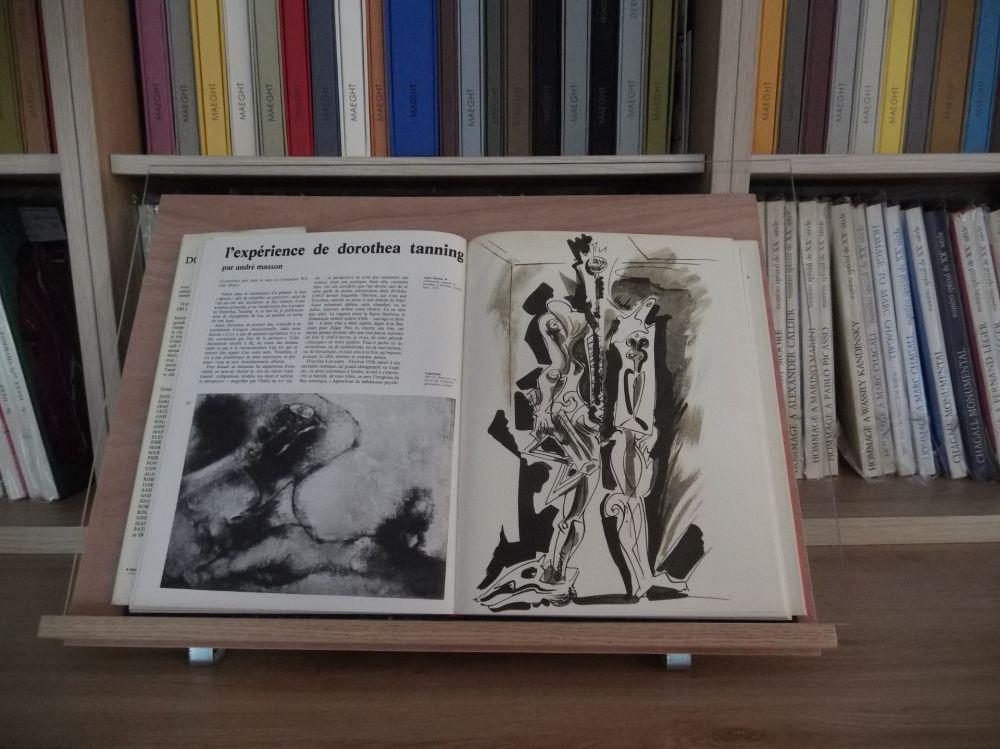Livre Illustré Masson - Xxe Tanning