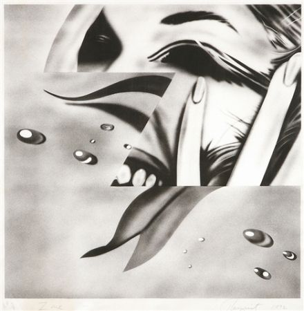 Lithographie Rosenquist - Zone